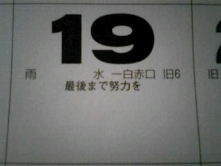 Image15830001.jpg