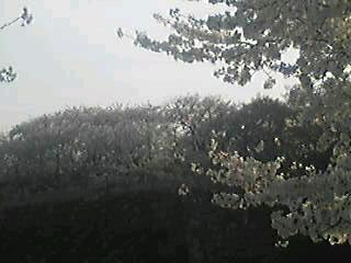 Image21390001.jpg