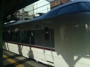 SN3J5529.jpg